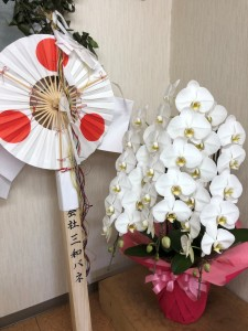 幣串、胡蝶蘭